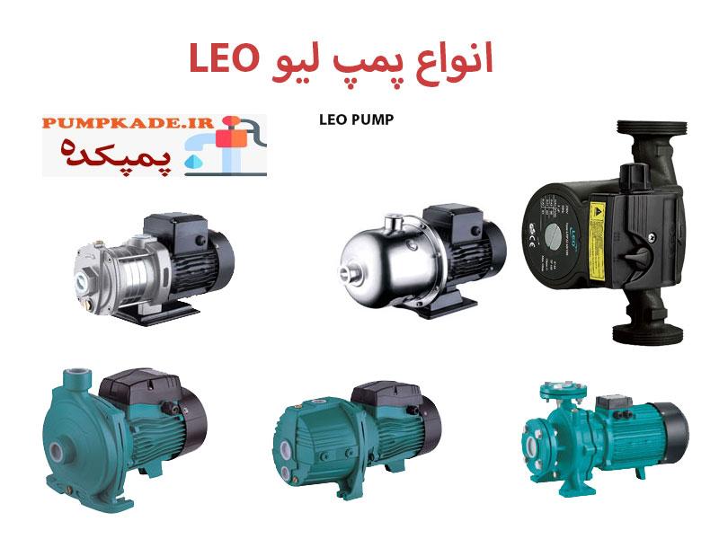 انواع پمپ لیو LEO : این شرکت در کشور چین تاسیس شده و با تمرکز بالا روی کیفیت بالای پمپ ها محصولات خود را به یکی از قابل اطمینان ترین پمپ ها در بین تولیدات رقبا تبدیل کرد .
