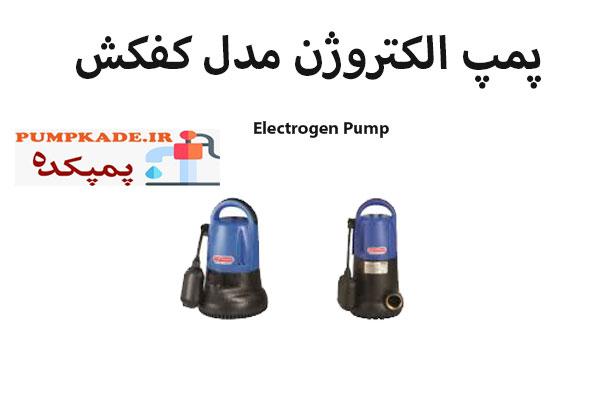 پمپ الکتروژن مدل کفکش : این پمپ دو مدل تولید می کند که عبارتند از : مدل TS و TF هر کدام از این مدل ها یک و یک چهارم اینچ خروجی دارند . داکثر هد پمپ کفکش الکتروژن 10.5 متر